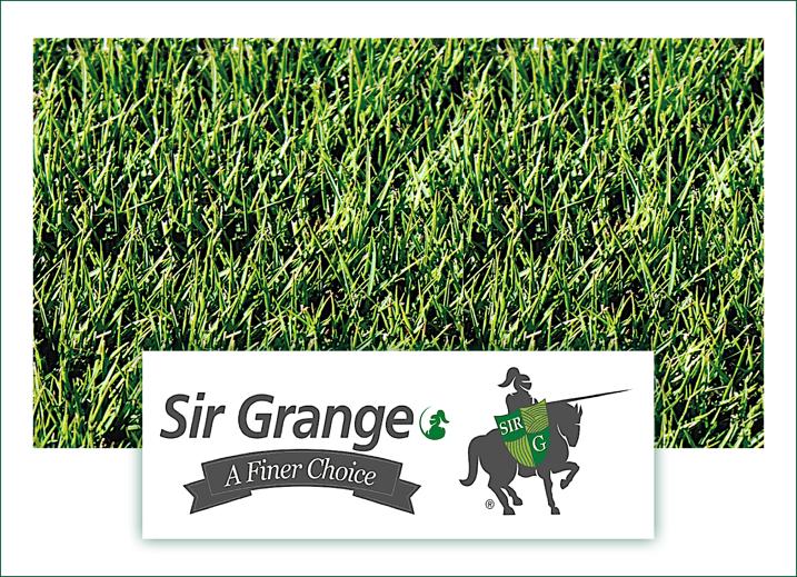 Sir Grange Zoysia Grass & Logo