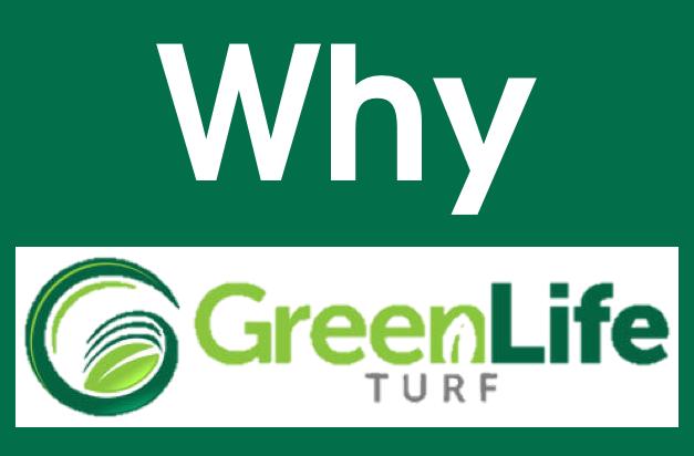 Why Use Green Life Turf