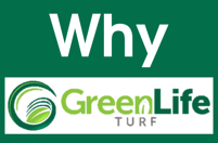 Why Use Green Life Turf