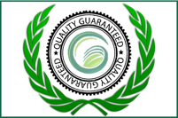 Green Life Turf - best for quality turf, best for service