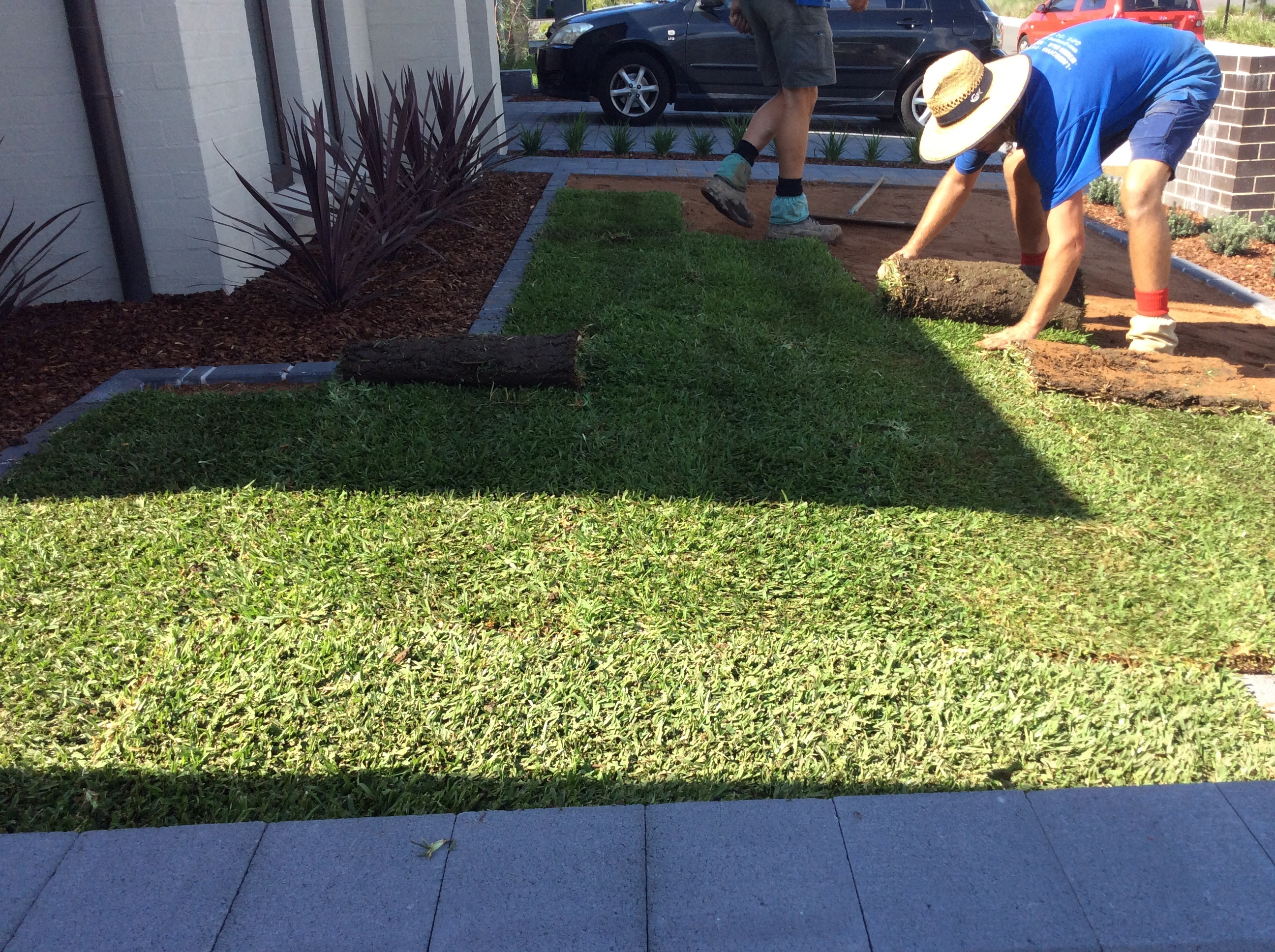 How soon should I lay my new grass