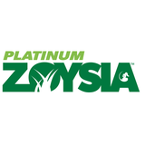 Platinum Zoysia Grass Lawn Sydney – Green Life Turf