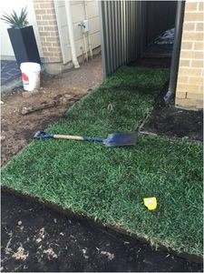 Green Life Turfs patented Bullseye Instant Grass turf laid perfectly for your area with thick organic soil and fully established turf