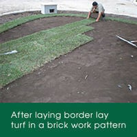 After laying your turf border lay turf to the rest of your area in a brick work pattern