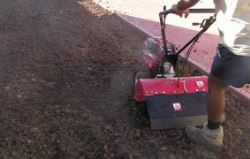 Preparing top soil for turf laying using a rotary hoe