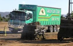 Freshly harvested turf delivered to your site