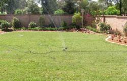 Turf Laying & Preparation - Sprinkler Watering Newly Laid Turf