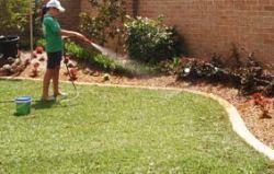 Turf Laying & Preparation - Watering Newly Laid Turf