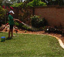 Watering Newly Laid Turf