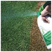 ColourGuard by Lawn Solutions Australia (LSA)