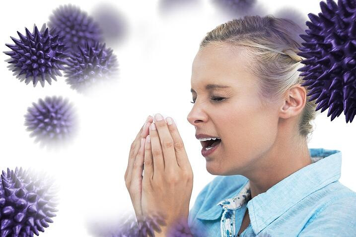 Which grasses trigger hay fever?