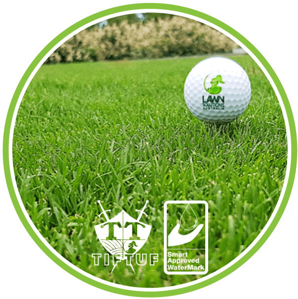 TifTuf Bermuda Smart Approved WaterMark Turf Grass