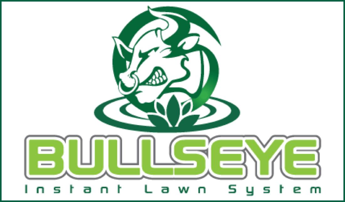 Link Bullseye-min.png
