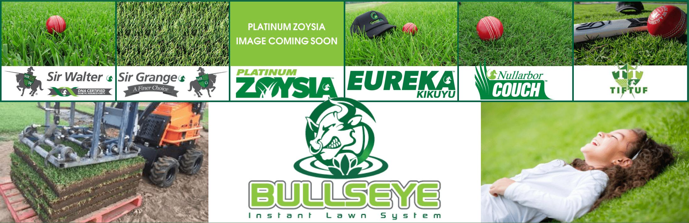Order Turf Online | Sir Walter DNA Certified Buffalo | Sir Grange Zoysia | Platinum Zoysia | Eureka Kikuyu | Nullarbor Couch | TifTuf Bermuda