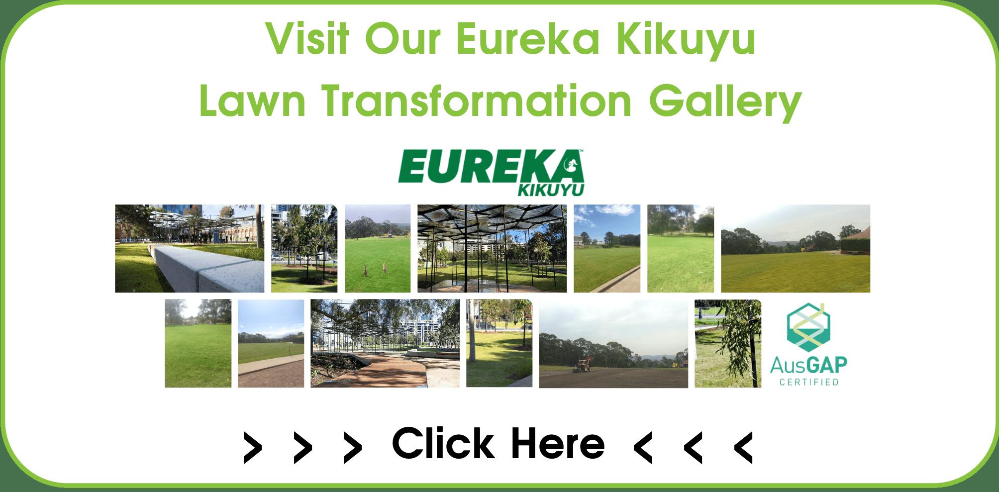 CTA Eureka Kikuyu Lawn Transformation Gallery Page-min