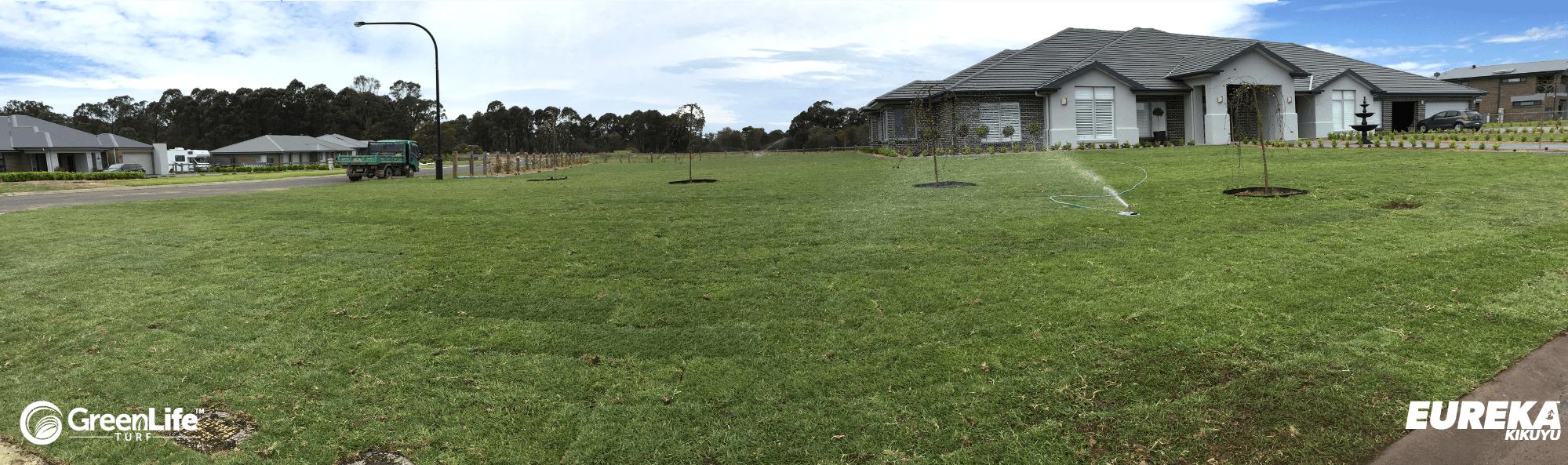 Eureka Kikuyu Grass - a Great Commercial Lawn - Turf & Grass Supply & Installation Sydney & NSW