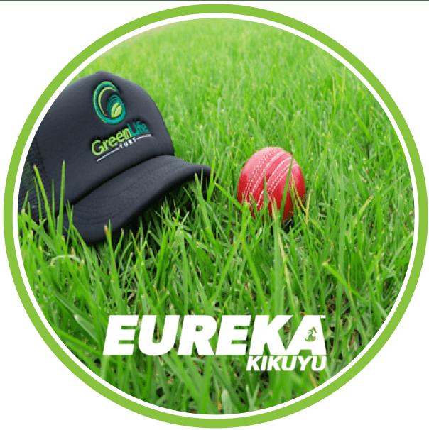 Eureka Kikuyu Turf Grass