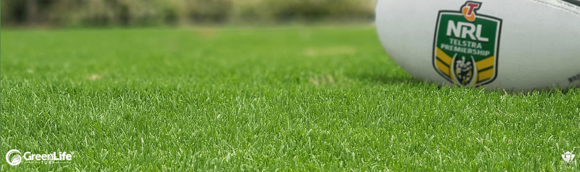 TifTuf Bermuda Grass - the hybrid Bermuda