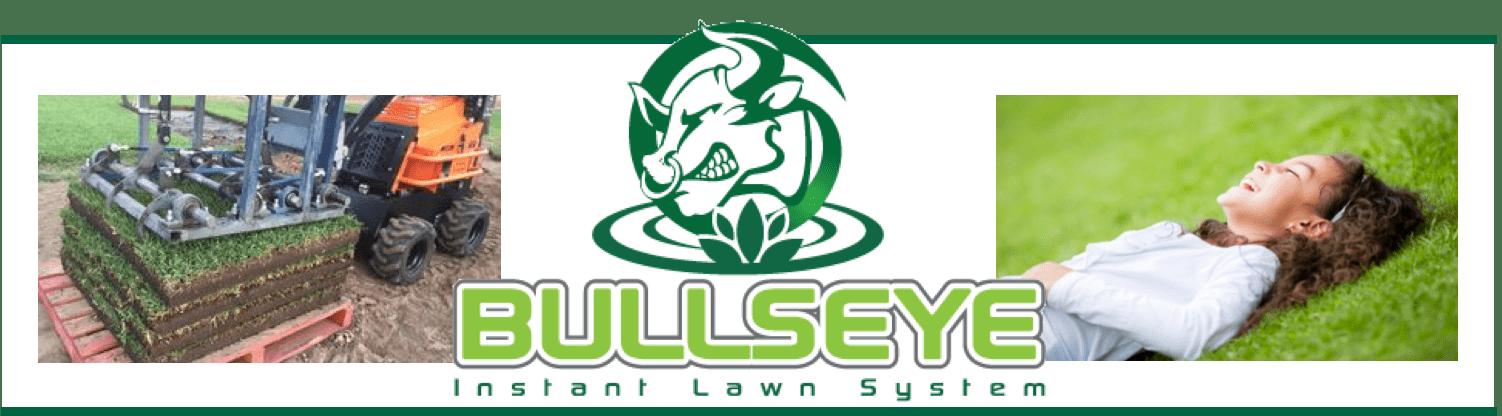 Bullseye Instant Lawn System