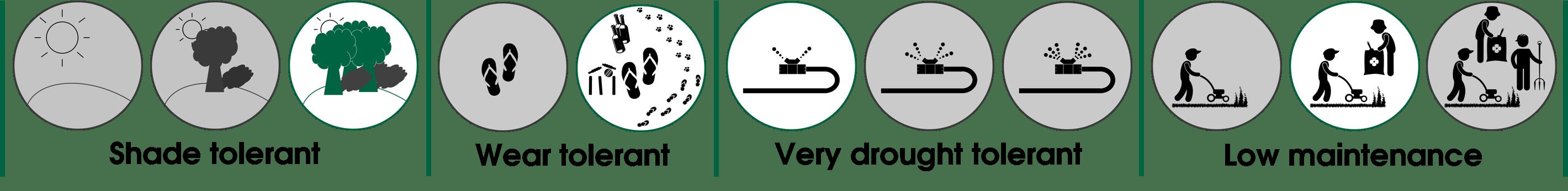 Nullarbor Couch Behaviour Set