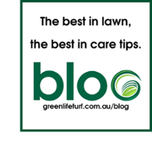 Lawn Care Tips - Green Life Turf Blog