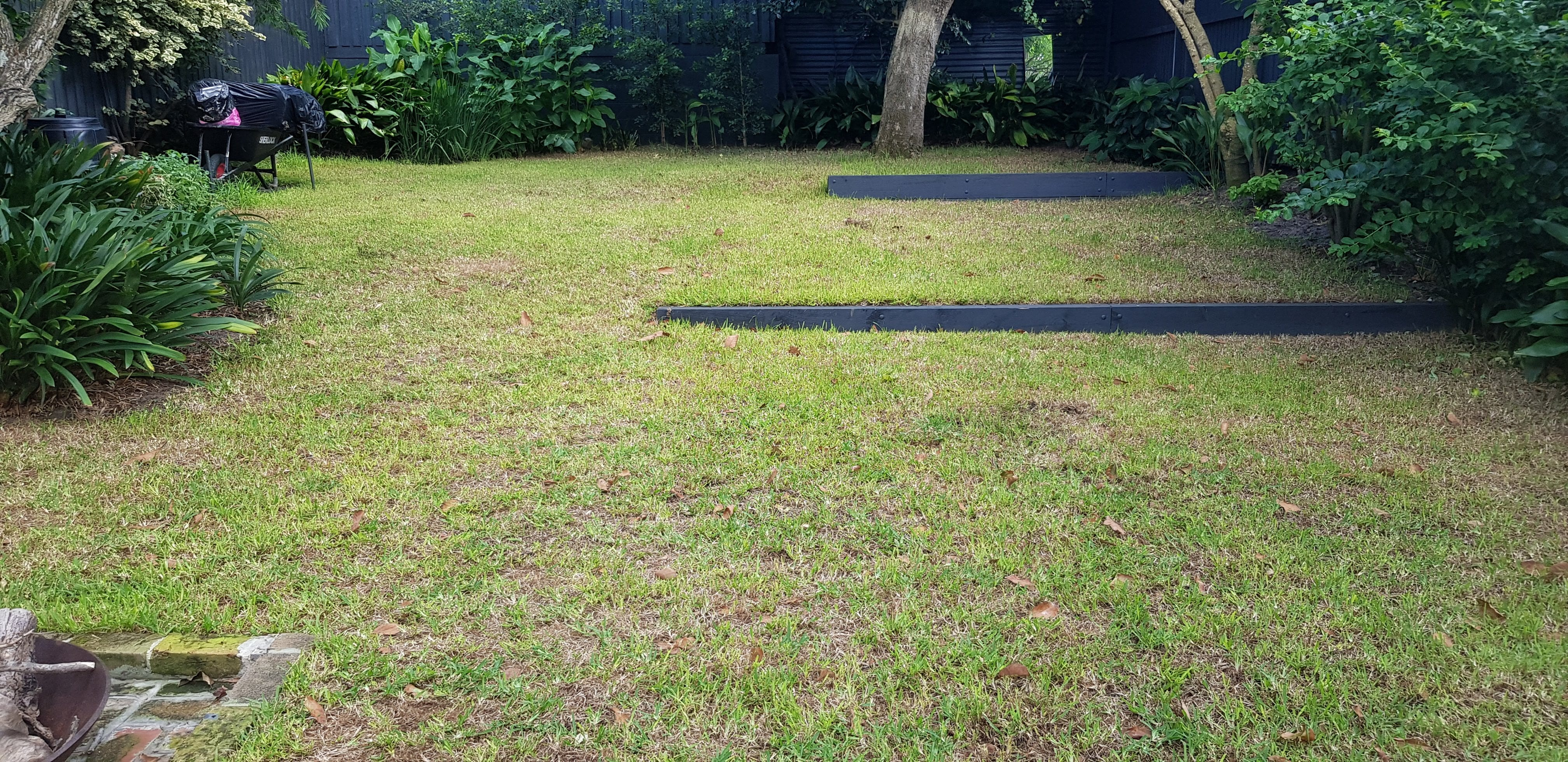 What Causes Bare Patches in Lawn | How to Repair Bare Patches in Lawn